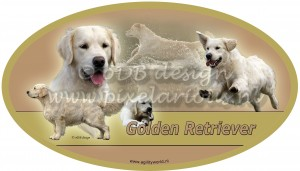 Golden Retriever ovaal wm