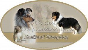 Sheltie1 ovaal wm