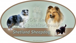 Sheltie2 ovaal wm