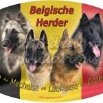 Alle Belgen mét de vlag van land origine!