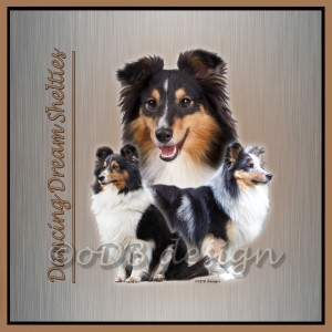 3 shelties zilver vierkant FINAL wm
