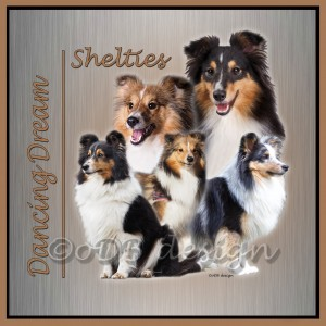 5 shelties zilver vierkant FINAL wm