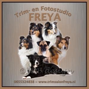 6 honden chantal rand bruin-zwart FINAL wm